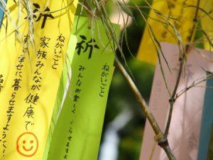 tanabatayurai3