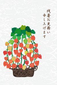 syotyumimaijiki3