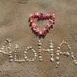 alohaladys1