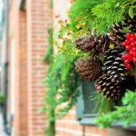 クリスマスツリーの起源と由来。飾りの本当の意味とは?