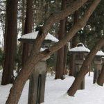 北海道神宮の初詣2017年の混雑予想!参拝時間はいつがおすすめ?