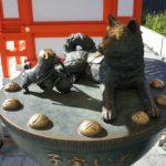 戌の日の安産祈願に行くならココで!東京で有名な神社5選!