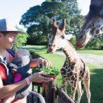 赤ちゃんの動物園デビューはいつからがいい?気を付けることは?