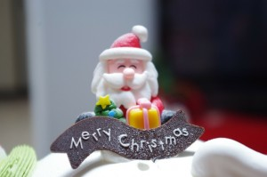 christmassenior2