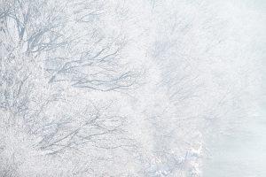 寒~い季節