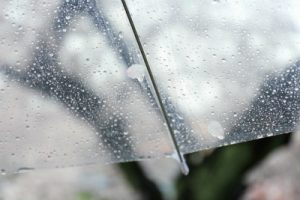 雨の日の傘