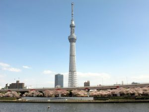 tokyohanami3