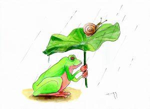 梅雨どきのカエル