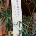 七夕の願い事ランキングTOP5!面白い願い事もご紹介!