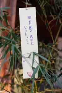 tanabatanegai2