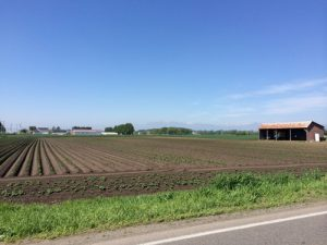 北海道の農作地