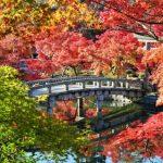 古都京都で紅葉を楽しむならココ!おすすめのスポット5選!