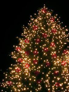 christmasdeco7