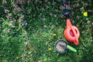 草場とスコップ