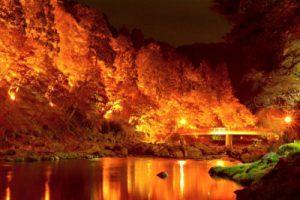 ライトアップされた香嵐渓の紅葉