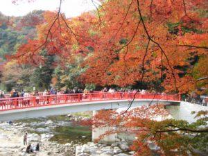 香嵐渓の綺麗な紅葉