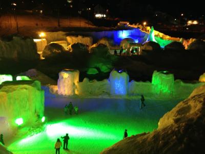 きれいな光る氷像