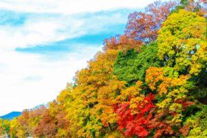 二十四節気の秋