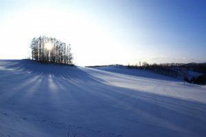 二十四節気の冬の季節