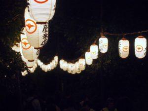 池上本門寺の提灯