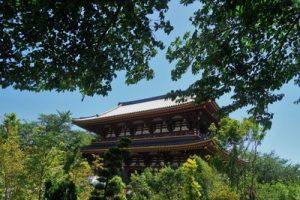 遠くから見た池上本門寺