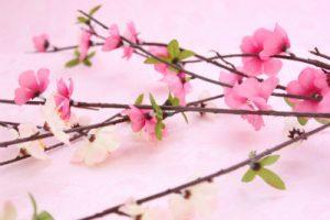 春が訪れる季節