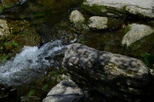 流れる川にある石