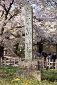 山高神代桜の標識