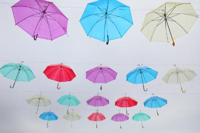 傘いろいろ