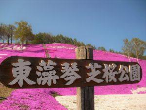 ひがしもこと芝桜公園の看板