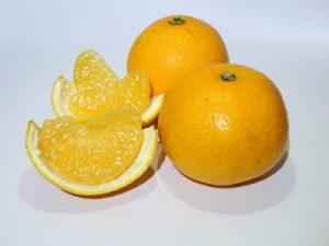 果物の八朔