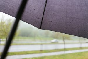 閉じる前の傘
