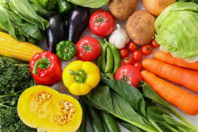 野菜が沢山!
