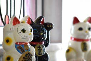 様々な色の招き猫
