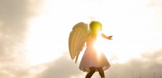 天使の取り分3